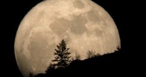 Luna ambientata