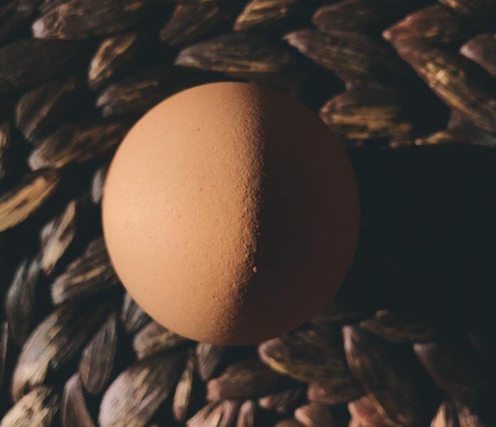 Esercizio Fotografico: Un uovo